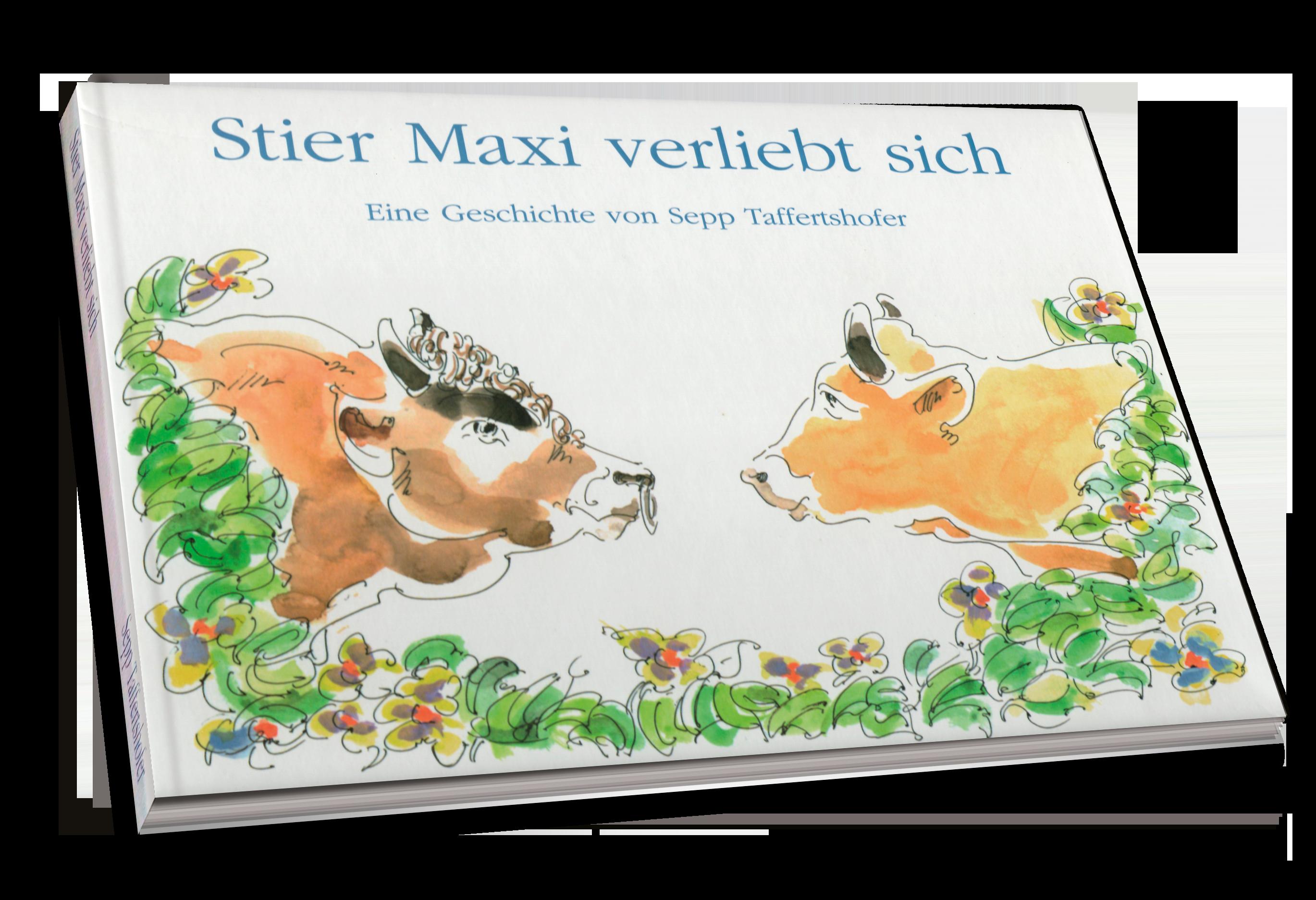 Kinderbuch Bauer Sepp und Stier Maxi